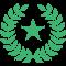 Senator Badge